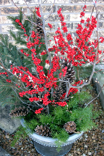 Winterberry and Evergreen