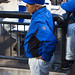 Terry Collins looks on