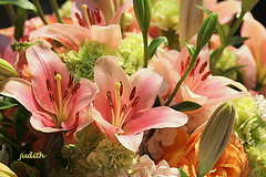linger a moment (judecat (getting back to nature)) Tags: lilies bouquet philadelphiaflowershow214