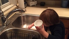 """Paul Washes the Dishes • <a style=""""font-size:0.8em;"""" href=""""http://www.flickr.com/photos/109120354@N07/32731510430/"""" target=""""_blank"""">View on Flickr</a>"""