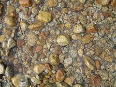 IMG_1624 (alygator6) Tags: california yosemite mercedriver