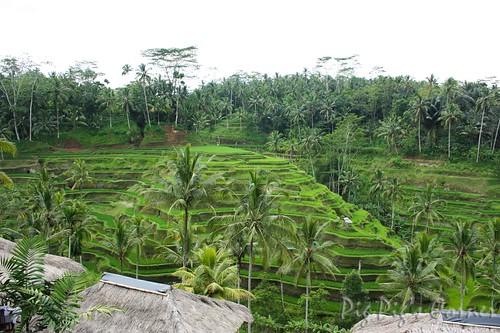 Bali 01-2