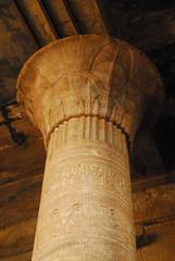 N21_6246 (gadgetdan) Tags: egypt hieroglyphics edfu