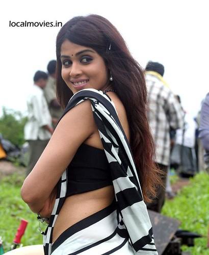 Genelia D'Souza in black and white sari