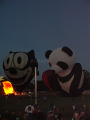 Plano Balloon Festival - Pandy the Panda Bear