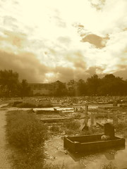 Holt Cemetery Sepia