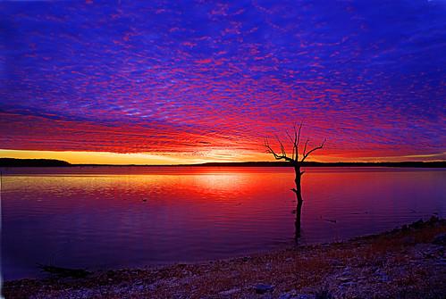 フリー画像| 自然風景| 湖の風景| 樹木の風景| 夕日/夕焼け/夕暮れ| アメリカ風景|      フリー素材|