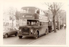 King Alfred bus, POU 495, 1956 Leyland Titan PD2/24, Winchester, November 1972 (mikeyashworth) Tags: hampshire winchester 1972 leyland leylandtitan leylandbus kingalfredmotorservices eastlancsbodywork kingalfredbus 11november1972 leylandpd224 pou495 mikeashworthcollection