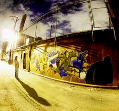 We Only Come Out At Night (kirstiecat) Tags: street shadow chicago man graffiti alley fisheye smashingpumpkins chicagoatnight fisheyelens fanfarlo graffitialley weonlycomeoutatnight cinchel