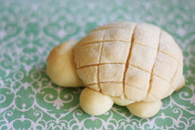 Turtle Melon Pan from Diamonds for Dessert