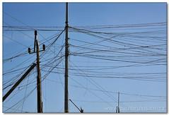 Powersharing (Panorama Paul) Tags: dunoon informalsettlement nohdr sigmalenses niksoftware nikond300 powersharing wwwpaulbruinscoza paulbruinsphotography