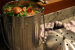 kitchen scrap bucket