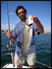SL 8 (Gorrioni) Tags: fishing shoreline lures spinning rod sammy pescado pesca robalo daiwa paseante lubina llampuga labrax lightspinning luckycraft seuelos zclaw gunfish gunnish