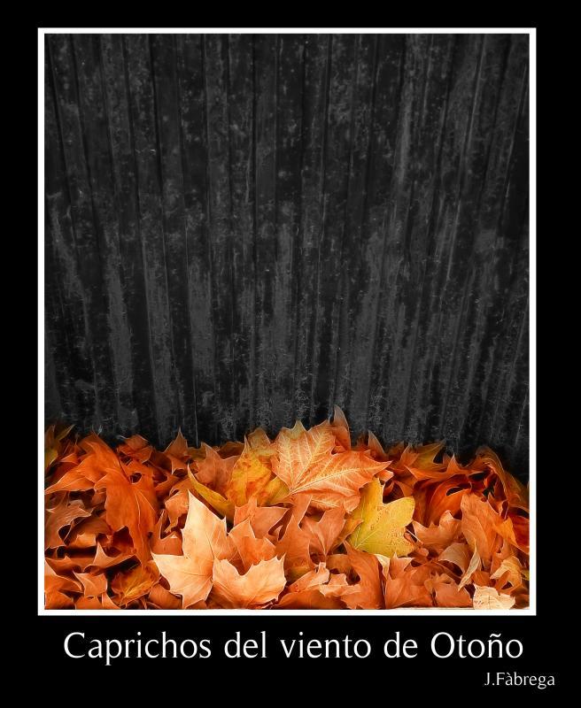 Caprichos del viento de otoño
