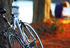 Bicycle (Ian Sane) Tags: park autumn sunlight color fall bike bicycle tom oregon canon river portland ian eos reading downtown fallcolor waterfront mark candid ii 5d tones willamette sane mccall