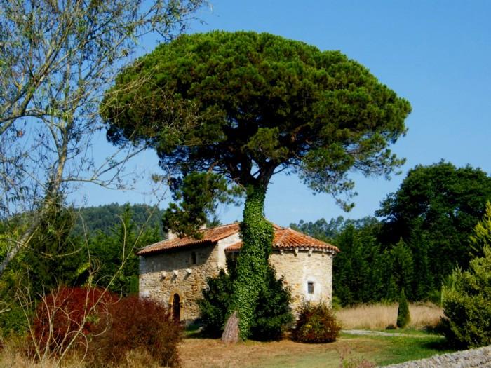 La belleza del románico - Página 3 4174196267_3386f20af3_o