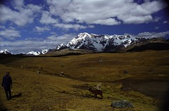 Vilcanota - Peru (dyonis) Tags: peru montagne trekking trek moutains pérou vilcanota cordilière peruvianimages