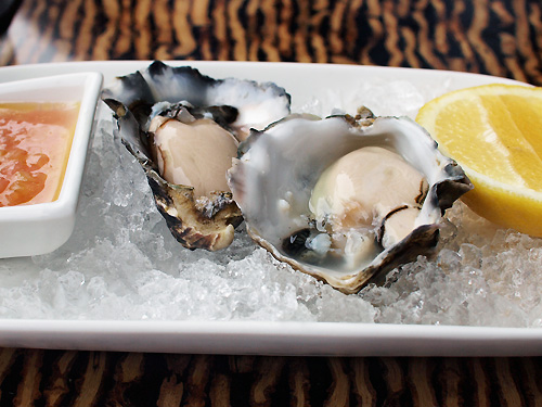 The Byron_Oysters