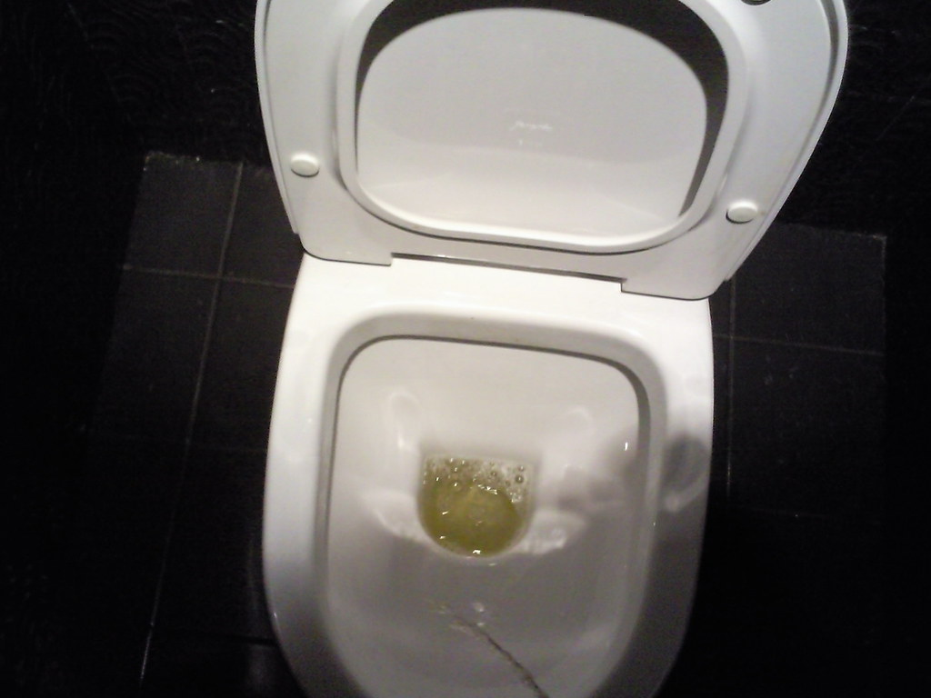 Photo003 (broosh) Tags: pee stream toilet restroom urine pissing toilets  urinator