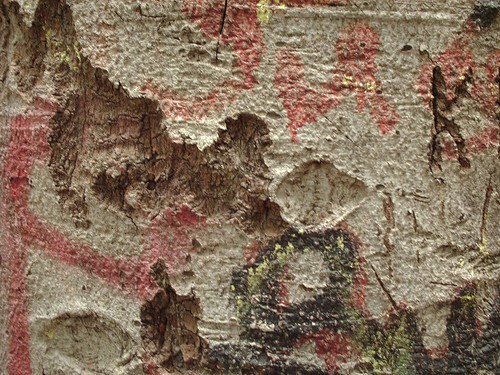 Distressed Bark Texture 3