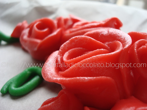 Angoliera rose rosse