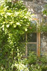 Earlshall Castle (Cthonus) Tags: castle window garden geotagged fife sirrobertlorimer walledgarden leuchars pottingshed 1546 sirwilliambruce efs1855mmf3556is earlshallcastle