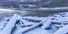 Logs (Paul Rioux) Tags: bc vancouverisland colwood westshore westcoast esquimaltlagoon snow ice logs clouds outdoor cold season winter prioux