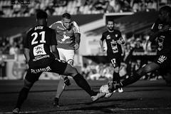 Brest - Le Havre-184 (MimozTofs) Tags: sb29 brest stadebrestois football but soccer canon lavigne hac havre