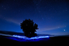 Blue Me Around A Tree (Fort Photo) Tags: blue sky mars lightpainting tree nature night circle stars landscape star nikon colorado venus weld indigo science led astrophotography planet co lone planets astronomy prairie grassland 2009 grasslands circular afterdark pleiades firstlight neco onblue d300 pawnee lig