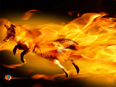 Novo Mozilla Firefox 3.5.1
