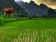 Vang Vieng Hut - Laos (landscape photography - sebastien-mamy.fr) Tags: green nature field landscape photography rice vert professional explore hut laos paysage frontpage vangvieng cabane riziere sebastienmamy