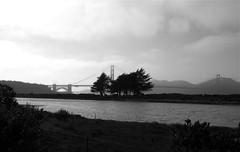Scenes from Crissy Field, San Francisco