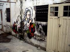(SINH) Tags: art graffiti sopaulo santos eveline sinh espaonave