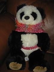 panda_in_dog_sweater