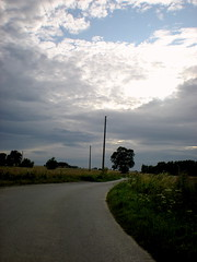 Le chemin de la sagesse ou de la libert est un chemin qui mne au centre de son propre tre . Mircea Eliade (kl0way) Tags: nikon lumire champs ciel nuages campagne bl