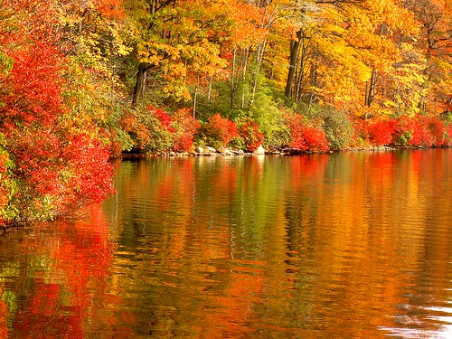 Red and Orange Fall | Flickr - Photo Sharing!