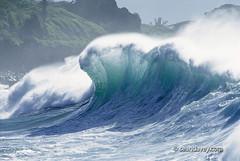 A large foam wave is hit by a backwash at waimea Bay, on the north shore of Oahu, Hawaii. (Sean Davey Photography) Tags: seawaveenergyseaswellgreenpoweroceanpoweroceanenergyseawavewavesenergyoceanwavepicturesoceanswellpictureswaveoceanwavecurlcurlingwavepowerenergyalternativepoweralternativeenergygreenpowergreen photographyseascapeswellwhitewashglowspectaclespectacularcleansurfbigcrashingdangerdangerousfoamywaimeabaynorthshoreoahuhawaiiseandaveyseandaveyphotographyfinephotographyartphotographyfineartcolorhor