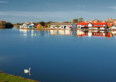 Fairhaven Lake (edowds) Tags: blue red england sky lake reflection sunshine buildings swan october scenery scenic sunny lancashire reflexions lythamstannes 2009 fairhavenlake 5photosaday thechallengegame 5halloffame