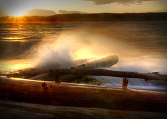 Mukilteo Beach (wendyb1214) Tags: storm beach washington driftwood pugetsound breakingwave mukilteo roughwater
