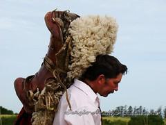 DSC08816 (Sergio Arajo Baldivieso) Tags: uruguay campo costumbres gauchos tradicin patrimonio jinetes criollas jineteadas