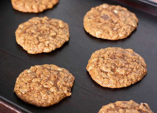 2009.11.18 Espresso Chip Oatmeal Cookies