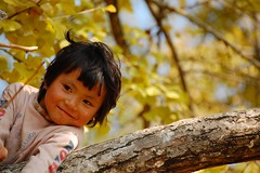 (Rosanna Leung) Tags: china people tree girl smile kids ginkgo village child  naive         nansiung