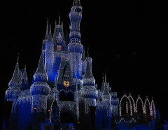 Disney/Orlando 12-09