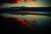 old love, new love (9pike) Tags: winter sea england cold rain pier twilight december northsea lowtide 2009 southend southendonsea southendpier oldschooldigital sigmadp1