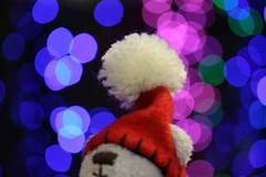 Merry Christmas From Teddy Bear (Marie Eve K.A. (Away)) Tags: christmas xmas winter baby holiday color colour canon season toy thankyou bokeh lumire illumination happiness noel feliznatal teddybear santaclaus lovepeace greeting merryxmas buonnatale joyeuxnol frhlicheweihnachten