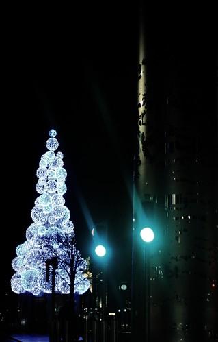 Christmas Tree, O'Connell Street, Dublin, 2009