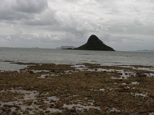 hawaii oahu honolulu hawaii3