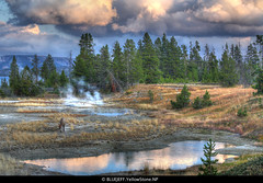 fetch (BlueJeff) Tags: nature yellowstonenationalpark   westthumb grandtetonnationalpark   canoneos5d  bluejeffproductions