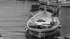 Camogli (aerre64) Tags: white black bianco nero monocromatico aerre64