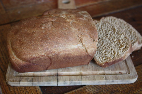 Molasses Whole Wheat Bread1